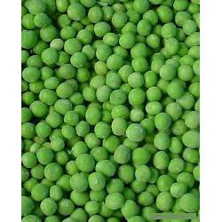 Peas Fancy #10